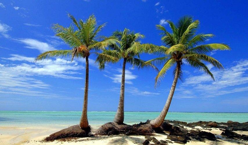 Восточная часть Мадагаскара