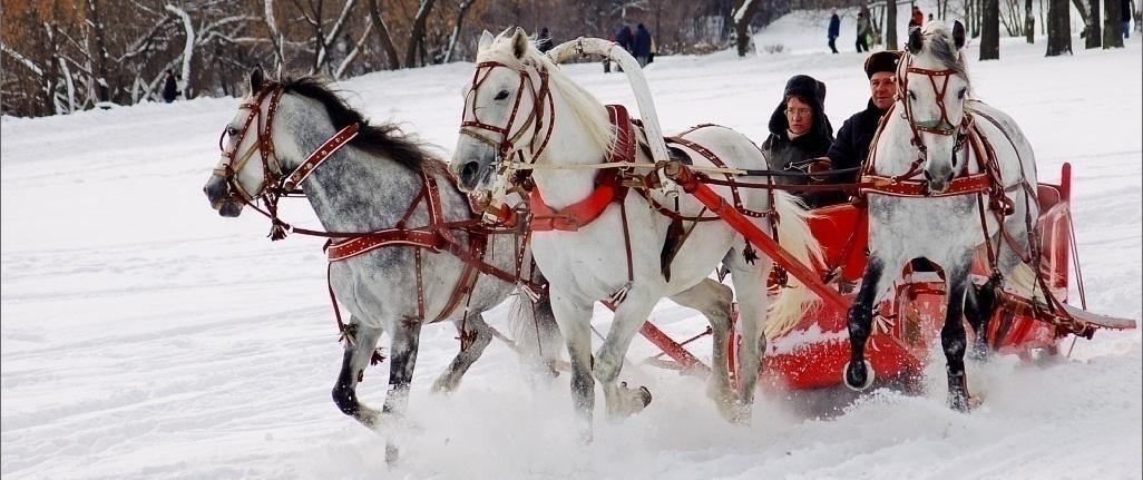 В гости к Деду Морозу: Новый год 2019 в Минске и Бресте