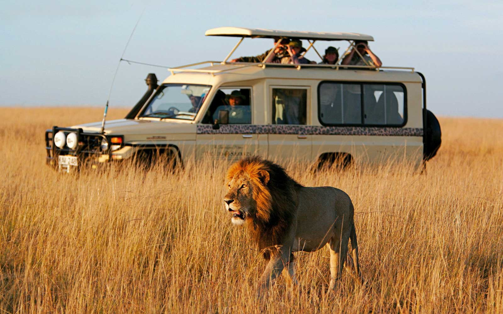 Сафари по Кении и Танзании. Великая миграция животных