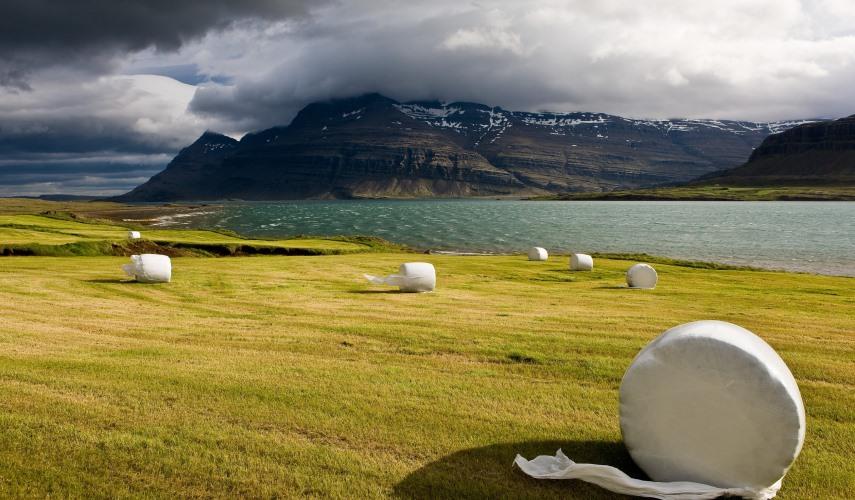 Очаровательная Исландия за 8 дней (индивидуальный тур)