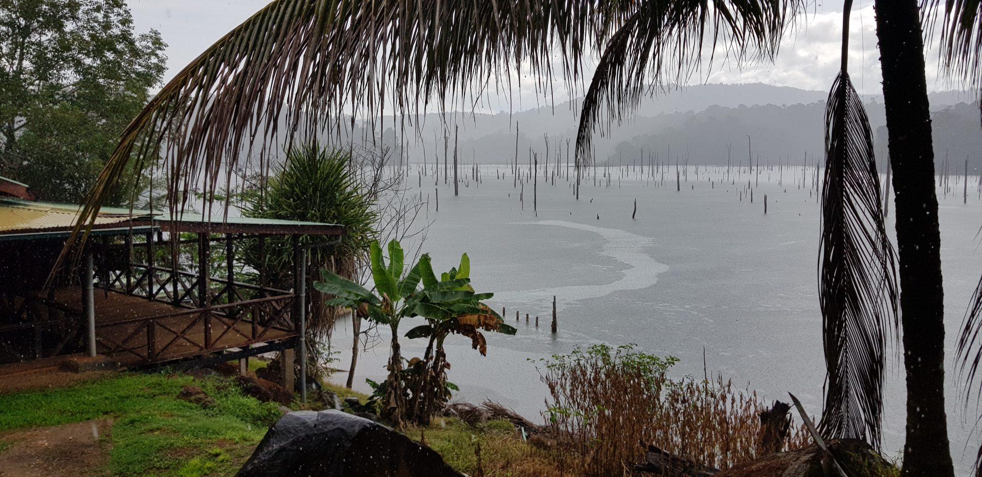 Суринам: Браунсберг – Stone Island – деревня Палумеу