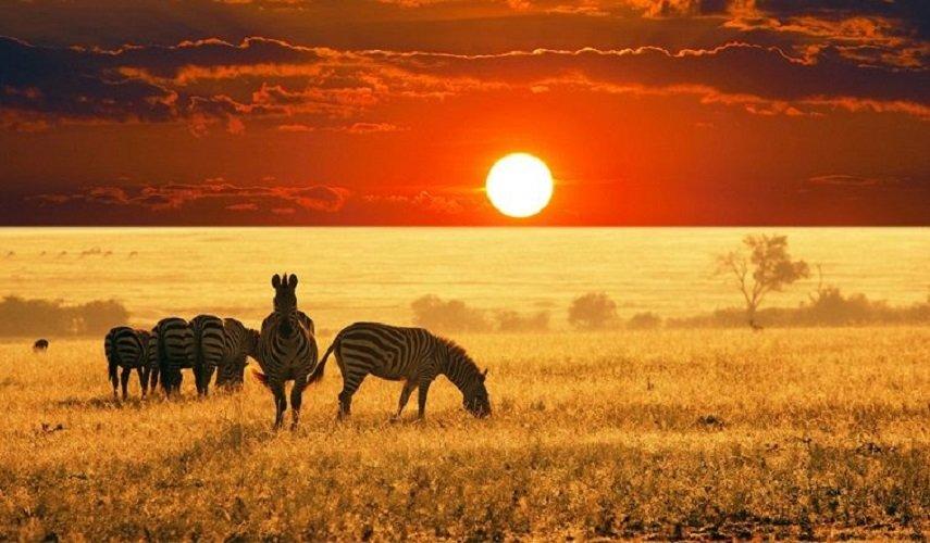 Путешествие по Намибии, Замбии, Зимбабве и Ботсване