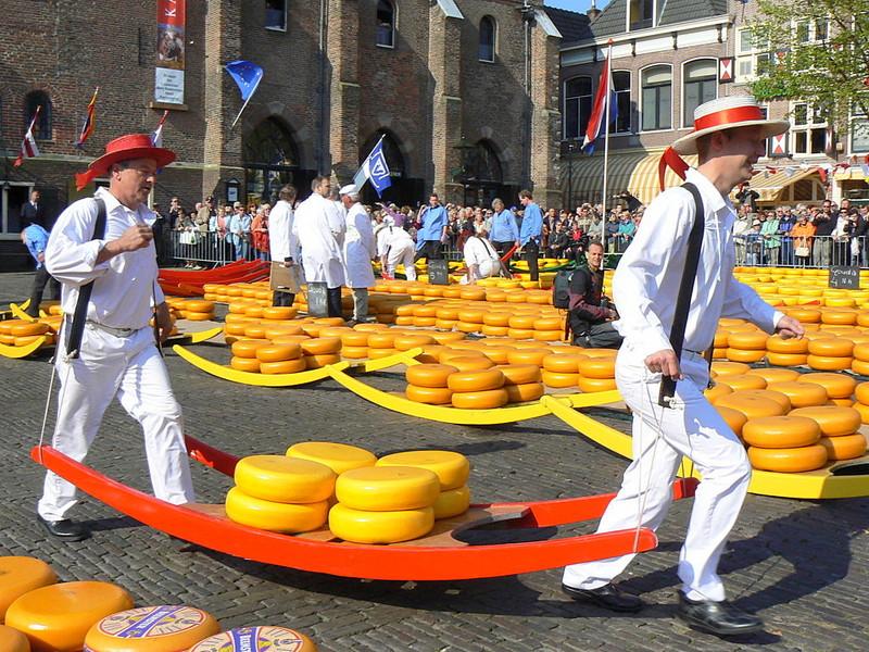 Аграрный инсетив-тур в Нидерланды