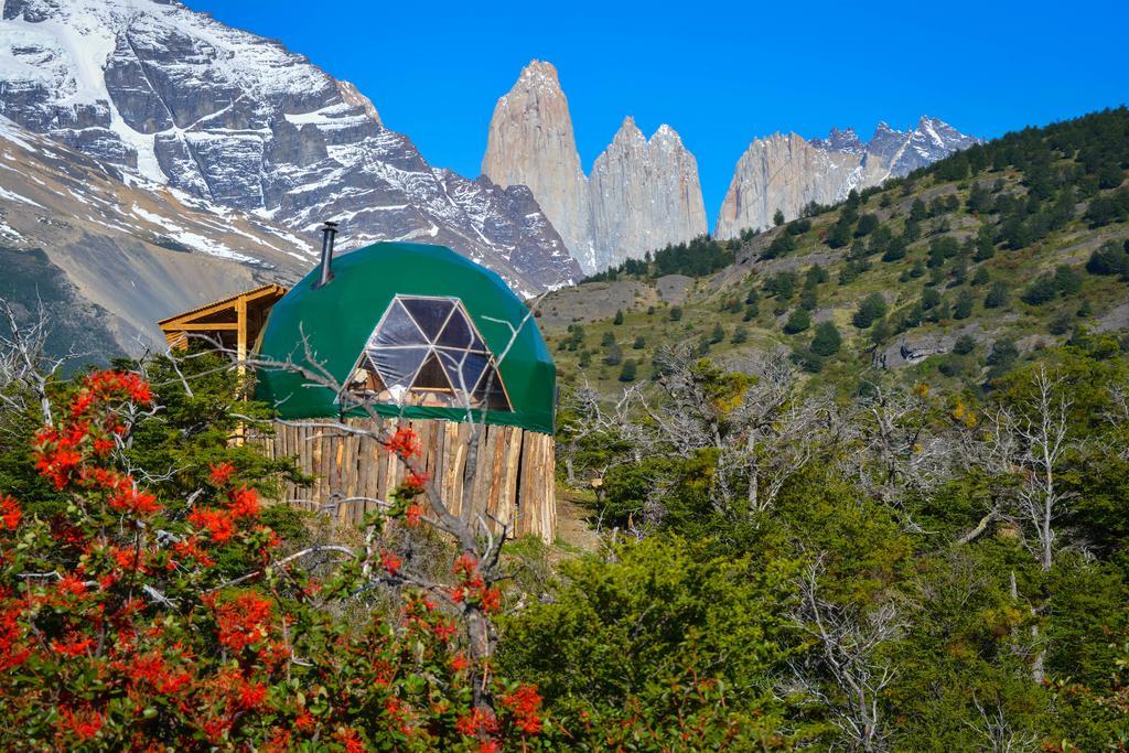Весь Чили в одном туре: Сантьяго – Атакама – Озерный край (Пуэрто Варас) –  Патагония (Торрес дель Пайне)