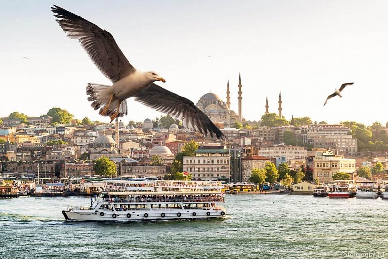 Экскурсионный тур «Великолепный Стамбул» 6 дней /5 ночей