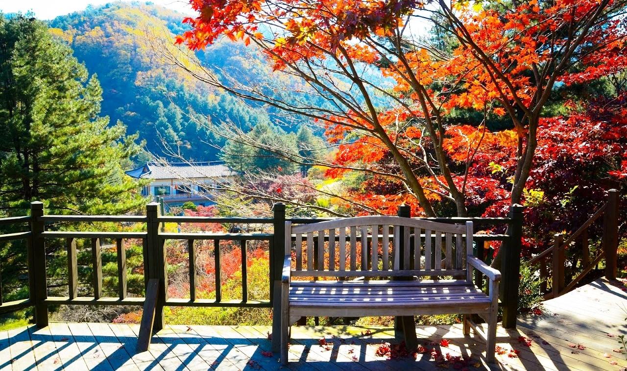 Краски осени – групповой тур в Корею (гестхаусы)!
