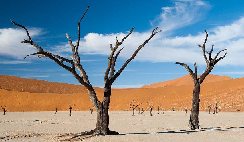 Каньоны и пустыни Намибии