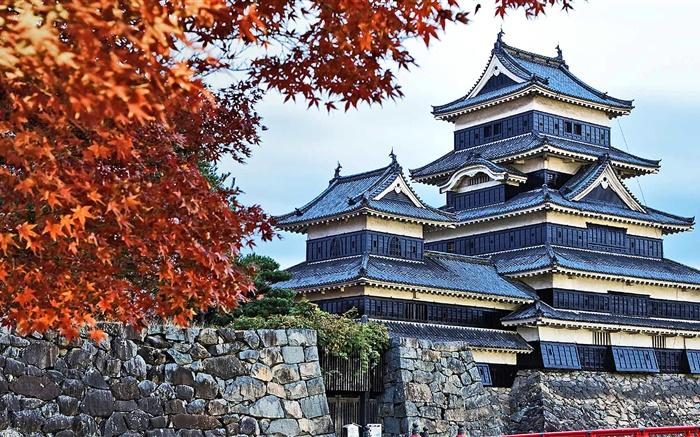 Япония для всех (самый популярный тур)