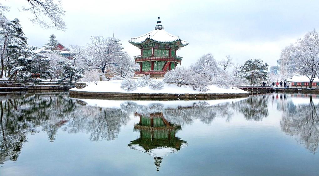 Рождество в Южной Корее!