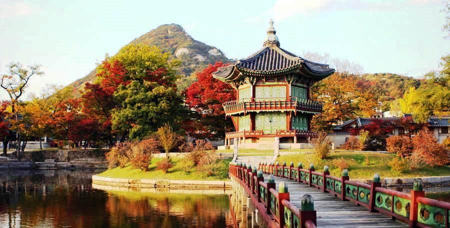 Краски осени – групповой тур в Корею!