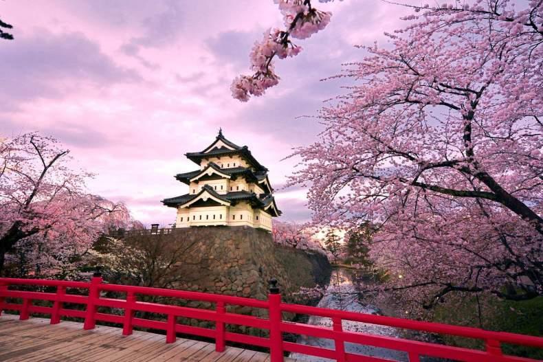 Неделя в Японии (Токио, Киото, Нара, Фудзияма, Удзи в стоимости)