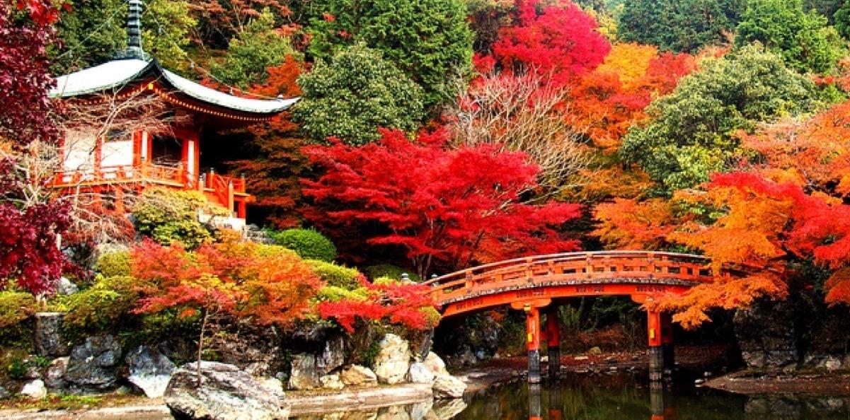 Классическая Япония (осень 2019)