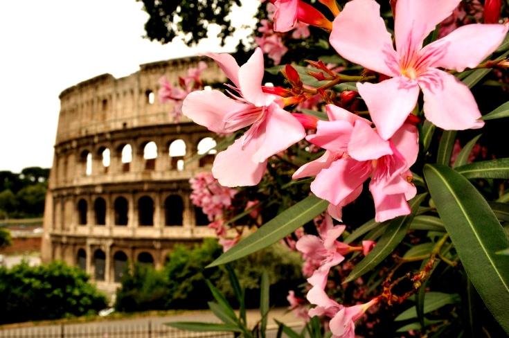 Автобусный тур в Италию на Майские праздники! 1 ДЕНЬ В РИМЕ