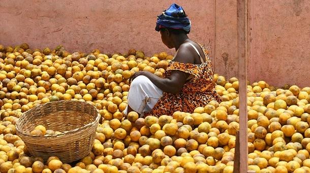 Тур в Гану, Бенин и Того+фестиваль Вуду