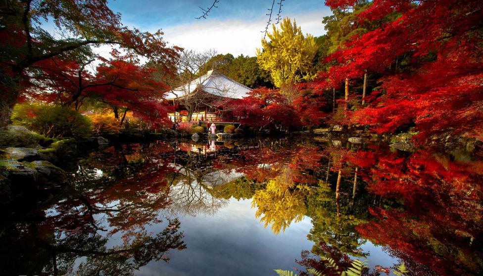 Алая осень в Японии