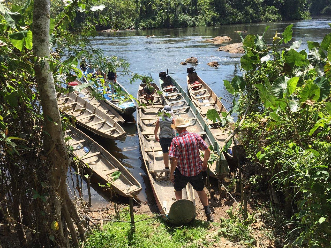 Суринам: Парамарибо и деревня Палумеу