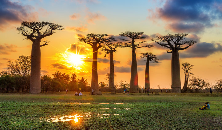 Вокруг Мадагаскара за 16 дней