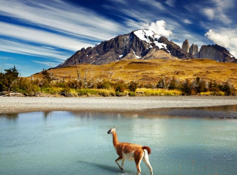 Тайны Патагонии: самый лучший тур в Чили