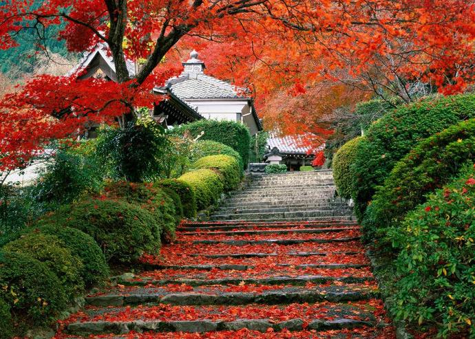 Япония с Востока на Запад плюс Сикоку