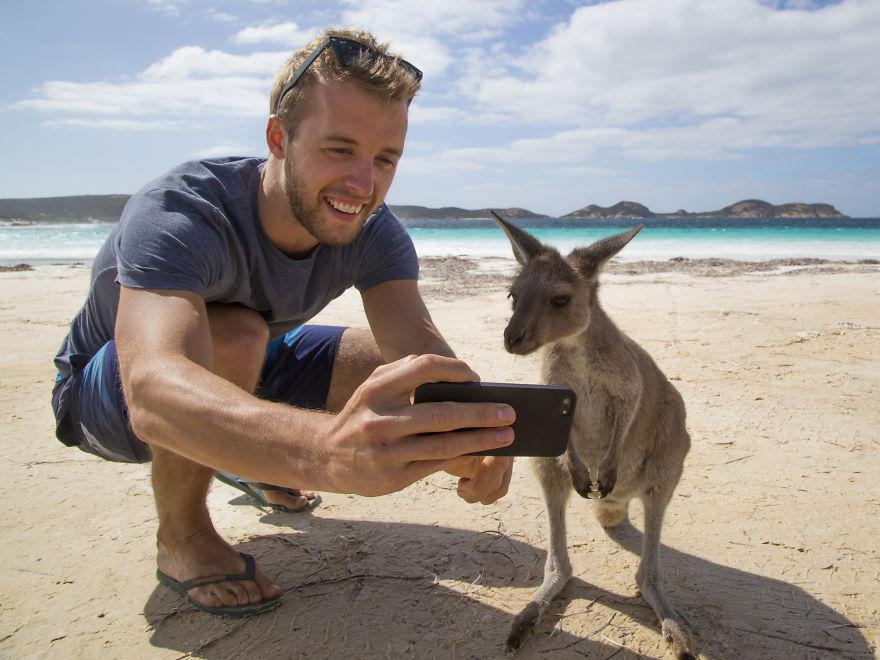 Австралия 2018!Селфи с кенгуру и Большой Барьерный Риф!