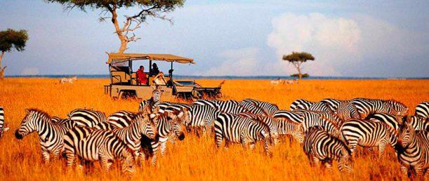 Открываем Танзанию: сафари и пляжи