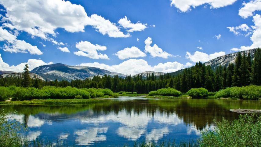 Сборный ЭКОНОМ ТУР!!! «Незабываемые каникулы на Кавказе»