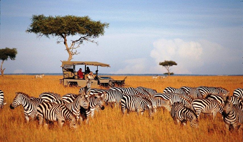 Групповое сафари: Тарангире и Нгоронгоро — 4 дня