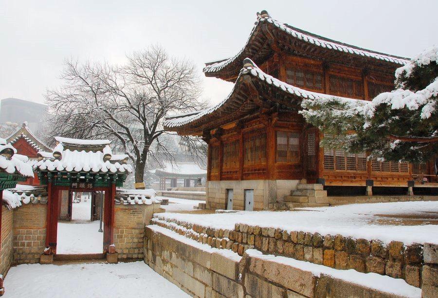 Зимний вояж в Южной Корее!